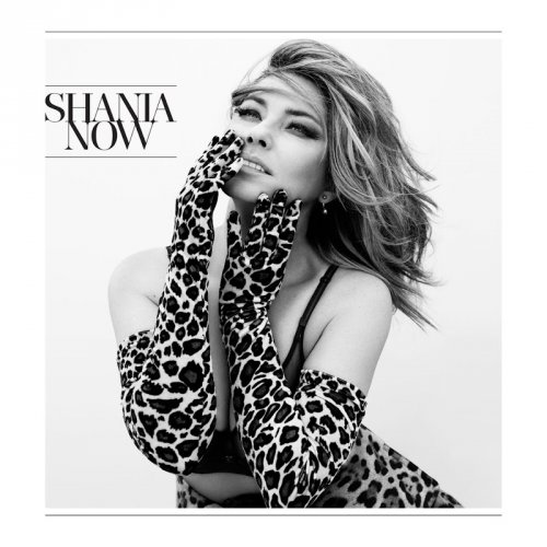 Shania Twain - Now (Deluxe Edition) cover (poster)