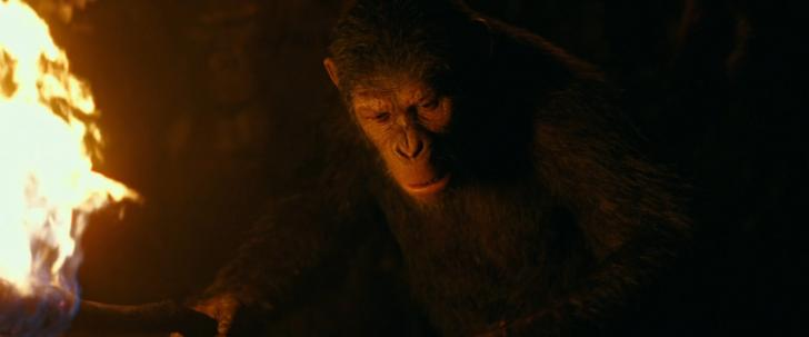 Download Torrent War for the Planet of the Apes 720p [HDRip] HDRip screen #3